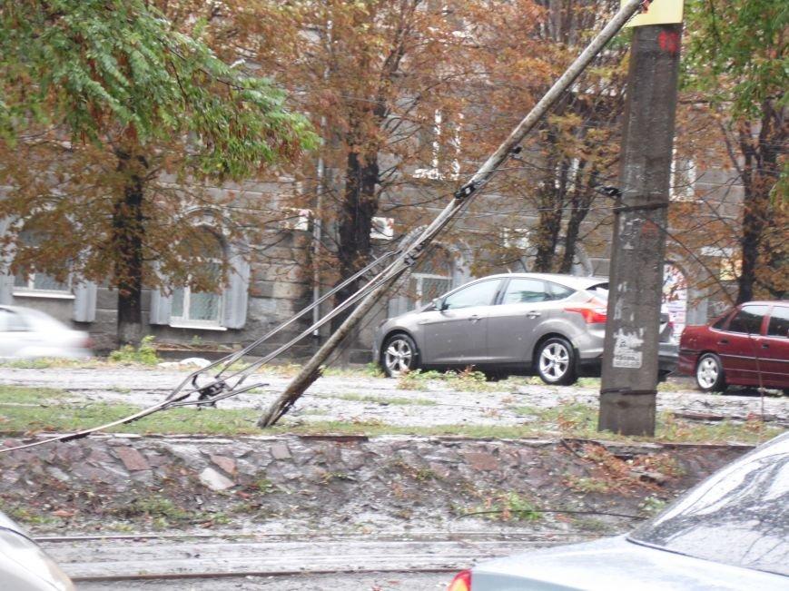 На Днепропетровск обрушился деревопад (ОБНОВЛЯЕТСЯ, ФОТО), фото-16