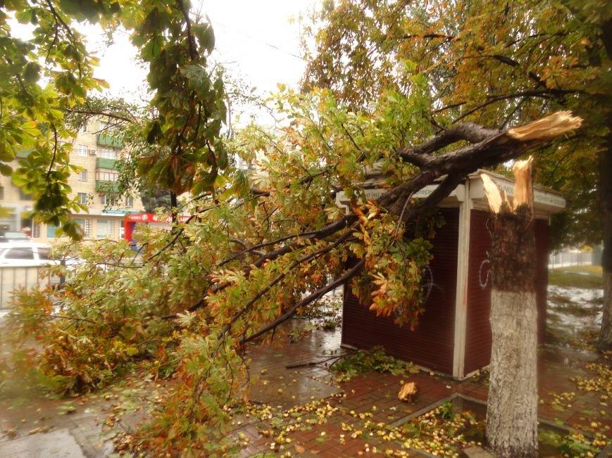 Ураганный ветер продолжает атаку на Мариуполь (ФОТОРЕПОРТАЖ), фото-18