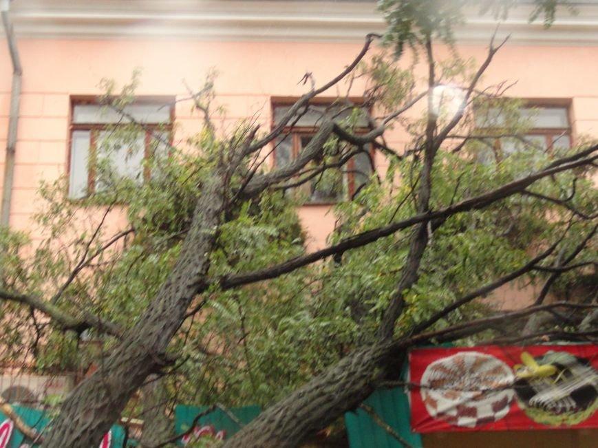 Ураганный ветер продолжает атаку на Мариуполь (ФОТОРЕПОРТАЖ), фото-10