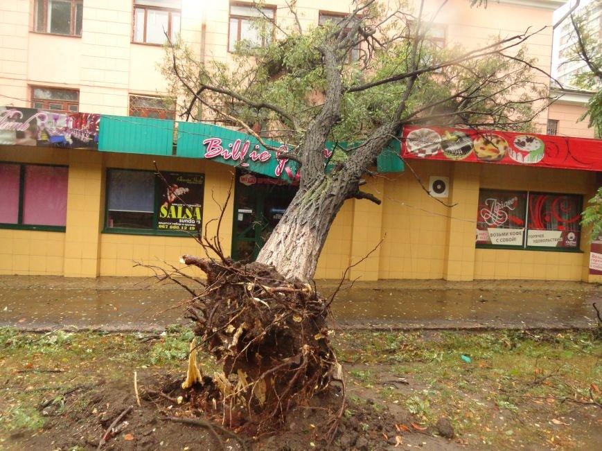 Ураганный ветер продолжает атаку на Мариуполь (ФОТОРЕПОРТАЖ), фото-9