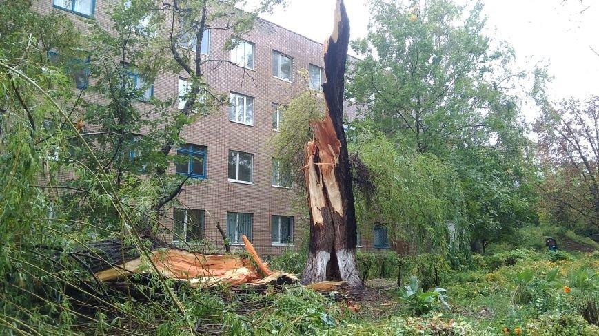 На Днепродзержинск обрушилась стихия, фото-11