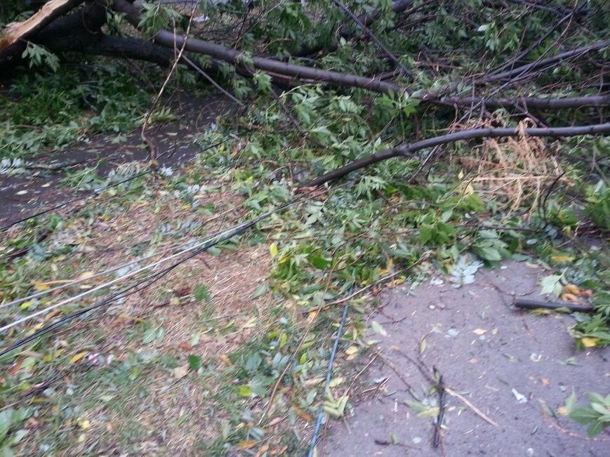 Стихия оставила разрушения на шестом участке Левого берега (ФОТО), фото-2
