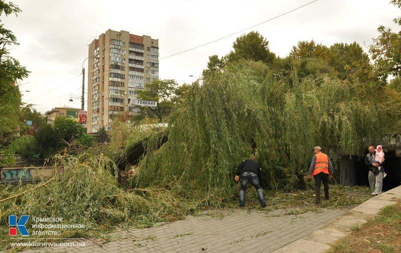 Непогода разошлась не на шутку: В Крыму ветром сорваны крыши, городские улицы тонут (ФОТО, ВИДЕО), фото-5