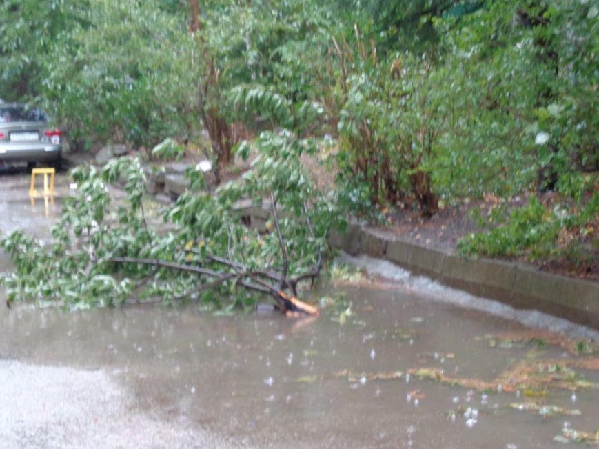 Ялта ликвидирует последствия урагана (ФОТО), фото-2