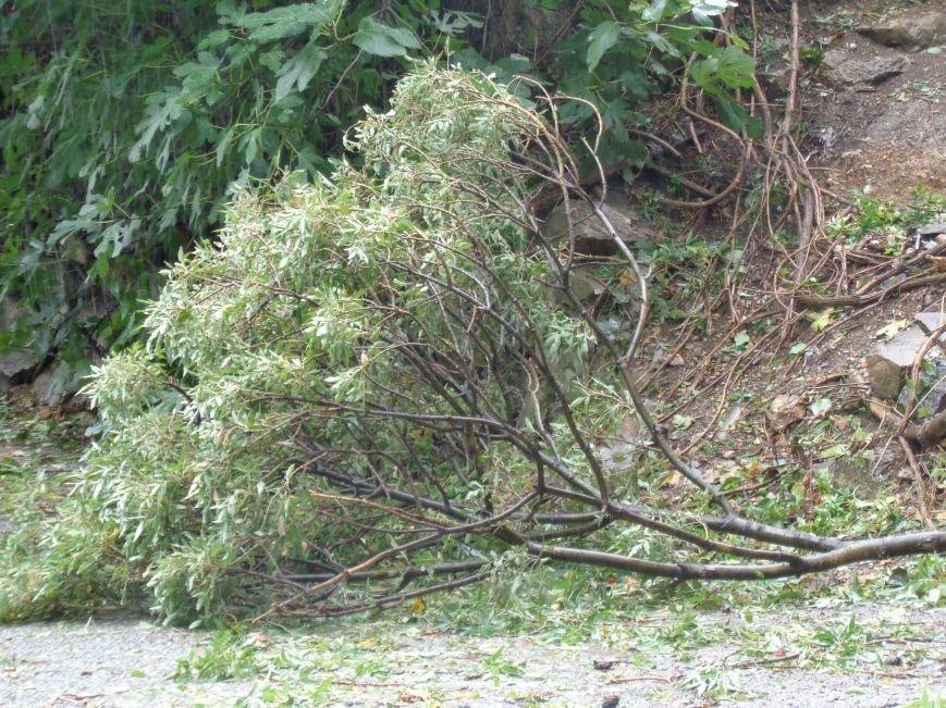Ялта ликвидирует последствия урагана (ФОТО), фото-5