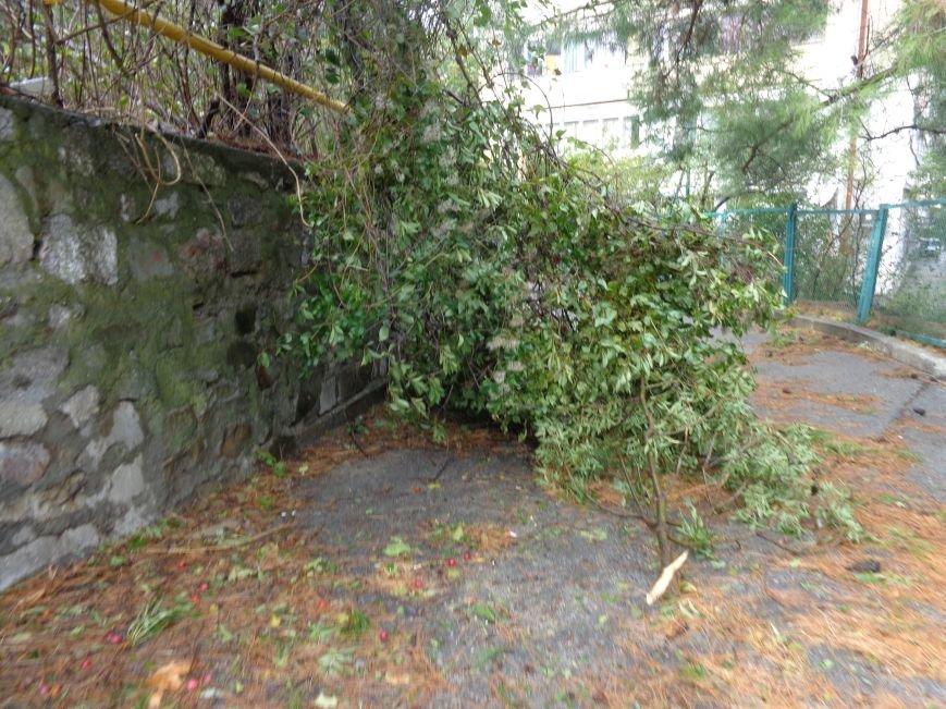 Ялта ликвидирует последствия урагана (ФОТО), фото-1