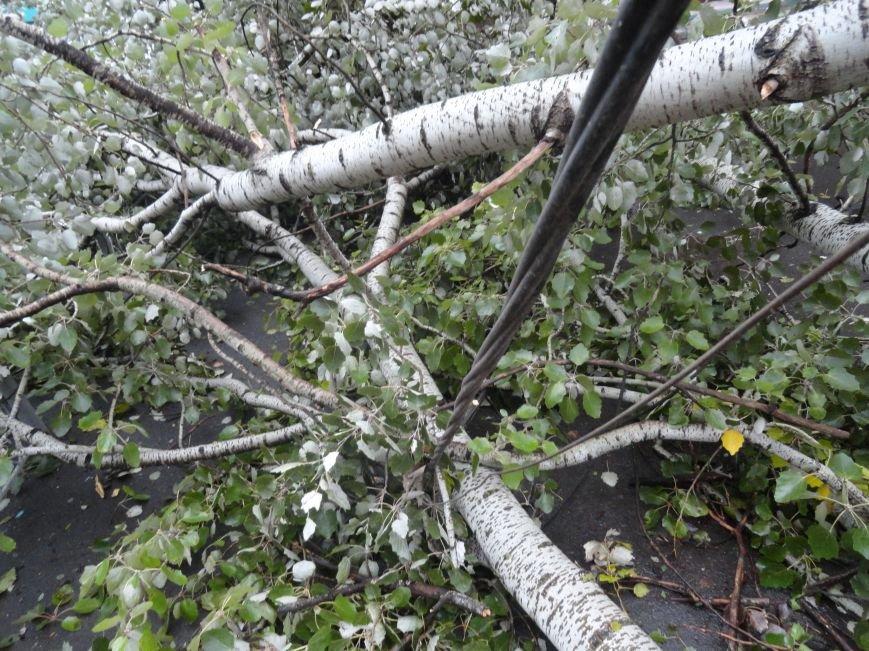 Мариуполь приходит в себя после вчерашнего урагана (ФОТОРЕПОРТАЖ+Дополнено), фото-4