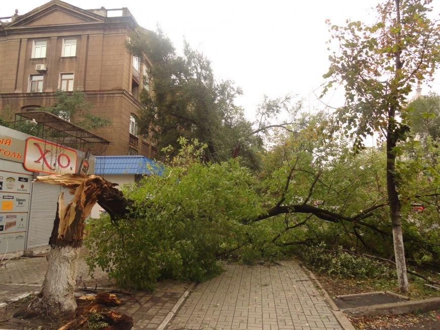 Мариуполь приходит в себя после вчерашнего урагана (ФОТОРЕПОРТАЖ+Дополнено), фото-19