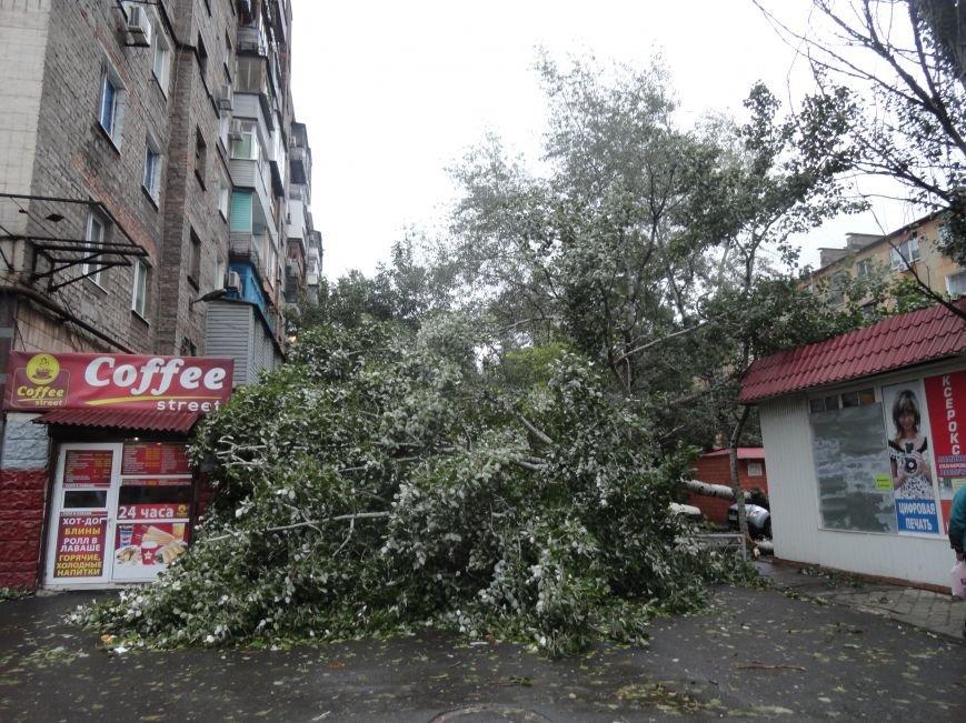 Мариуполь приходит в себя после вчерашнего урагана (ФОТОРЕПОРТАЖ+Дополнено), фото-3