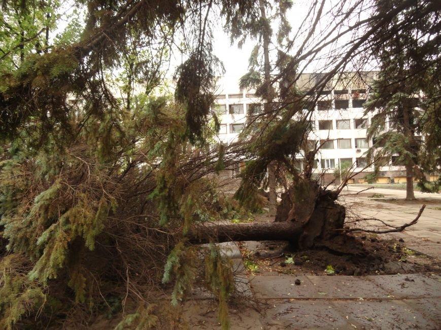Мариуполь приходит в себя после вчерашнего урагана (ФОТОРЕПОРТАЖ+Дополнено), фото-11