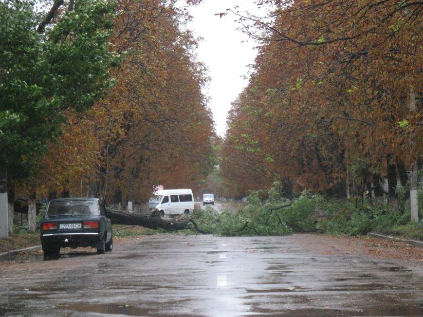Кременчугские коммунальщики сбились с ног - город завален упавшими деревьями (ФОТО), фото-2