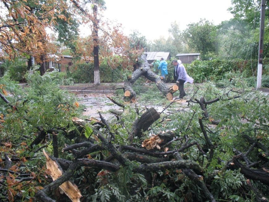 Кременчугские коммунальщики сбились с ног - город завален упавшими деревьями (ФОТО), фото-1
