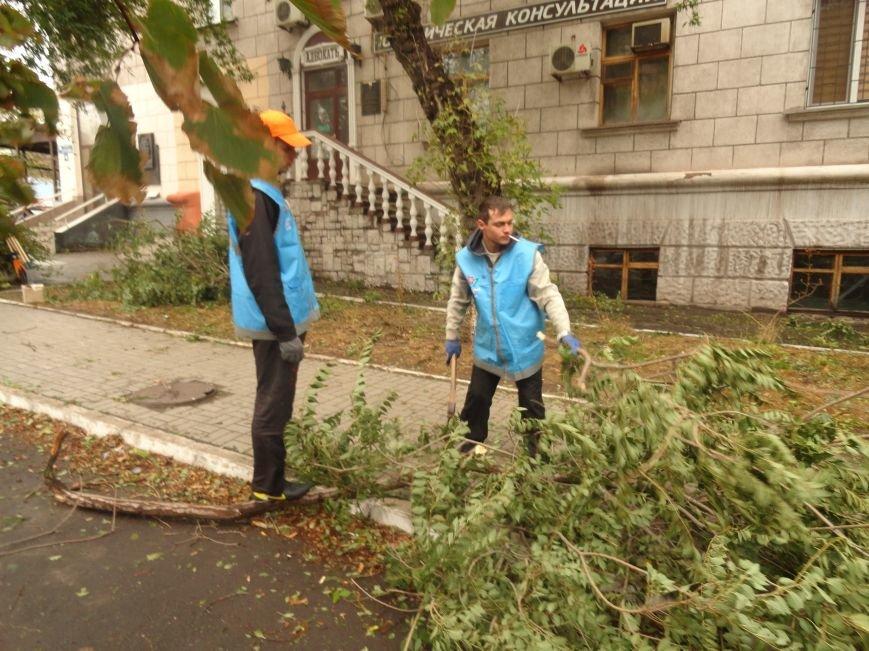 Волонтеры помогают убирать деревья на улицах Мариуполя (ФОТО), фото-7