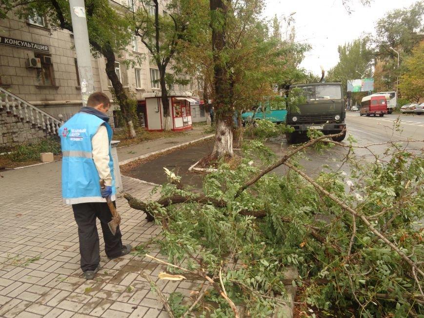 Волонтеры помогают убирать деревья на улицах Мариуполя (ФОТО), фото-9