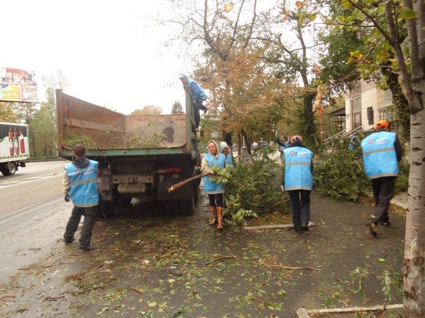 Волонтеры помогают убирать деревья на улицах Мариуполя (ФОТО), фото-5