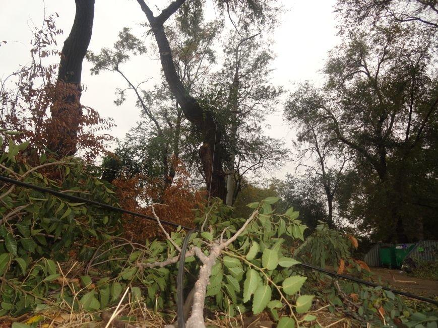 Мариупольцы начали борьбу за восстановление освещения (ФОТО), фото-2