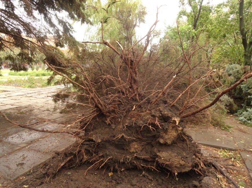 Фотопятница «Ураган - история потрясения», фото-14