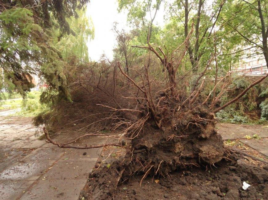 Фотопятница «Ураган - история потрясения», фото-13