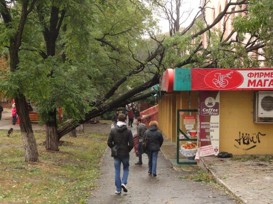 Фотопятница «Ураган - история потрясения», фото-15