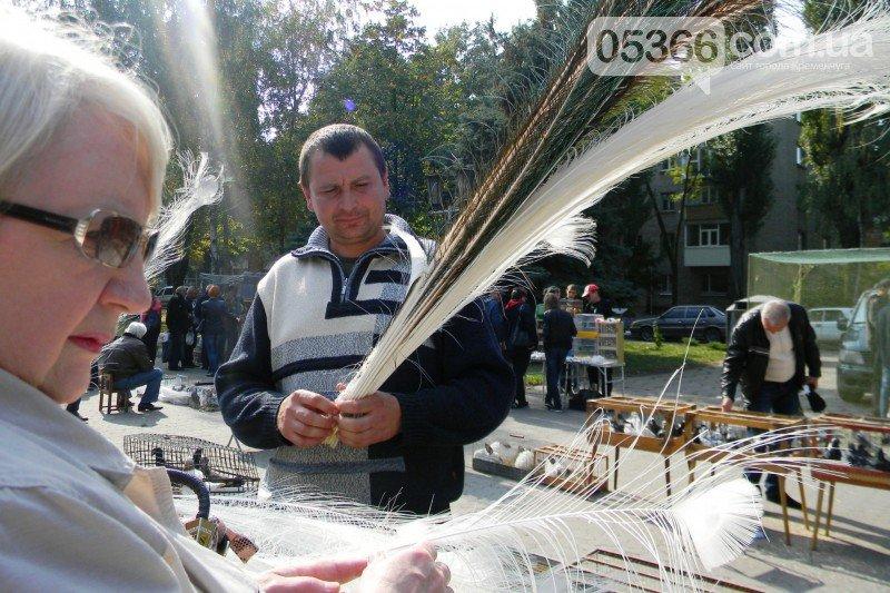 В Кременчуге прошла выставка птиц!   ФОТО, фото-5