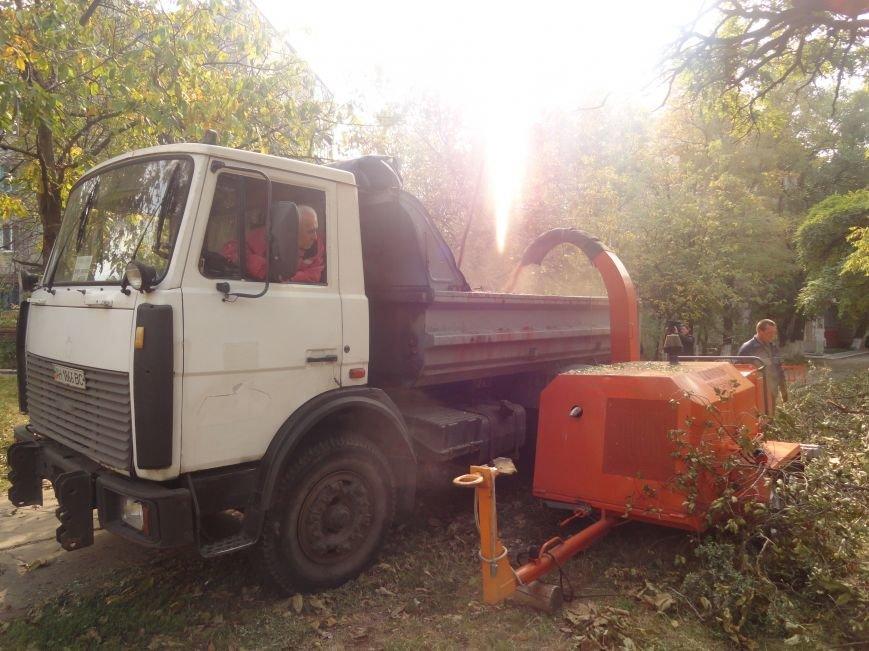 Коммунальщики убрали в Жовтневом районе Мариуполя около 70 кубометров поваленных деревьев (ФОТОРЕПОРТАЖ), фото-3