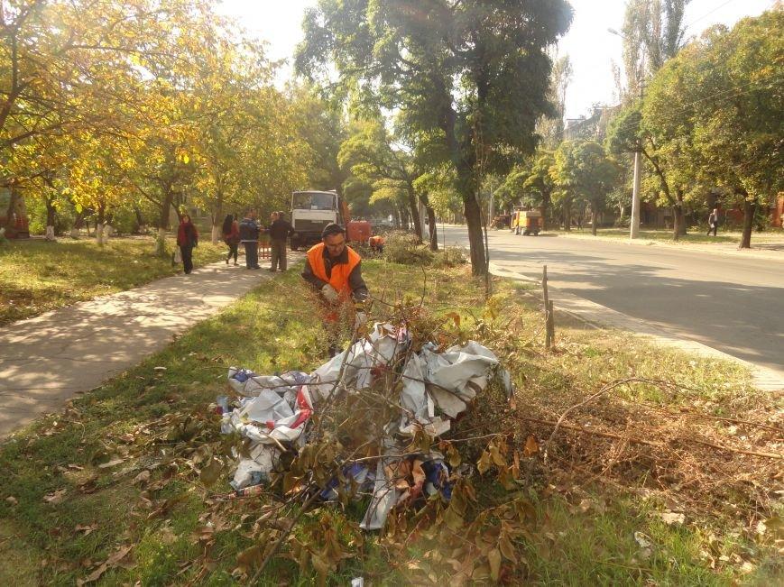 Коммунальщики убрали в Жовтневом районе Мариуполя около 70 кубометров поваленных деревьев (ФОТОРЕПОРТАЖ), фото-2