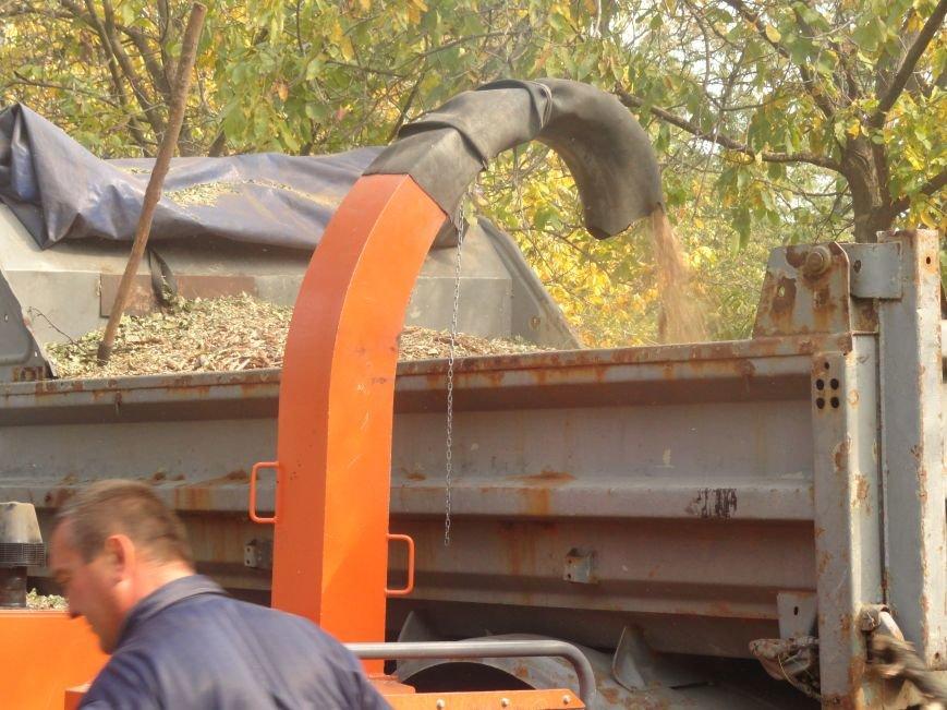 Коммунальщики убрали в Жовтневом районе Мариуполя около 70 кубометров поваленных деревьев (ФОТОРЕПОРТАЖ), фото-5