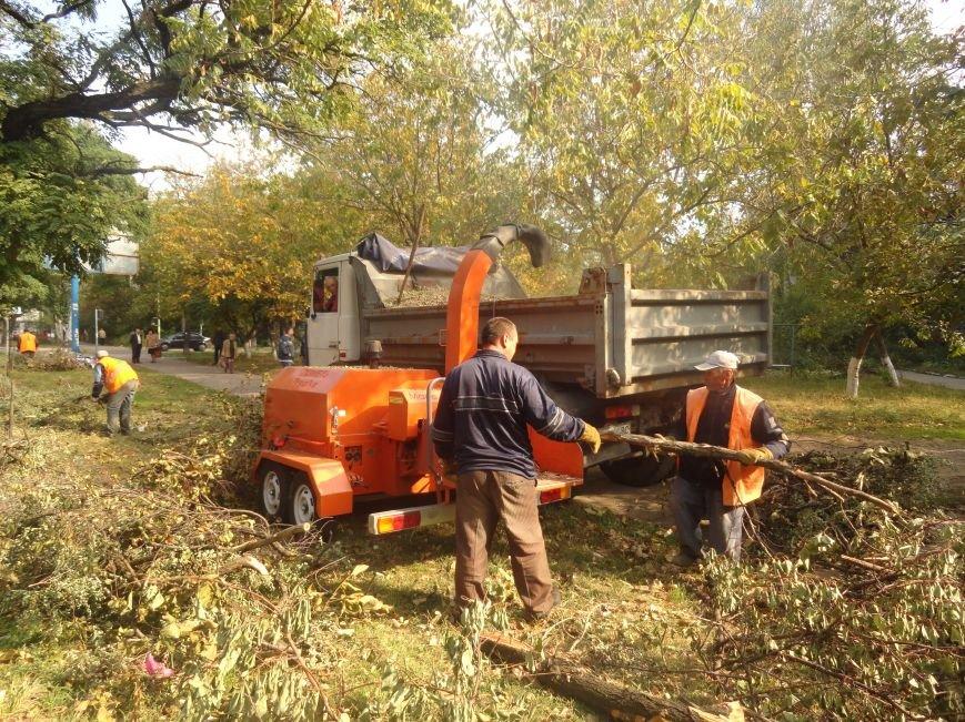 Коммунальщики убрали в Жовтневом районе Мариуполя около 70 кубометров поваленных деревьев (ФОТОРЕПОРТАЖ), фото-4