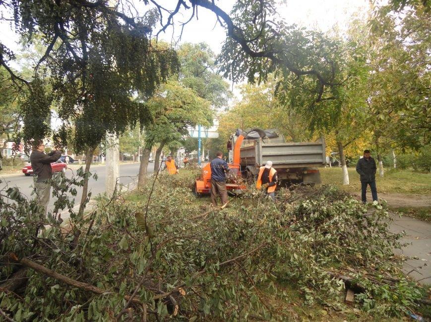 Коммунальщики убрали в Жовтневом районе Мариуполя около 70 кубометров поваленных деревьев (ФОТОРЕПОРТАЖ), фото-6