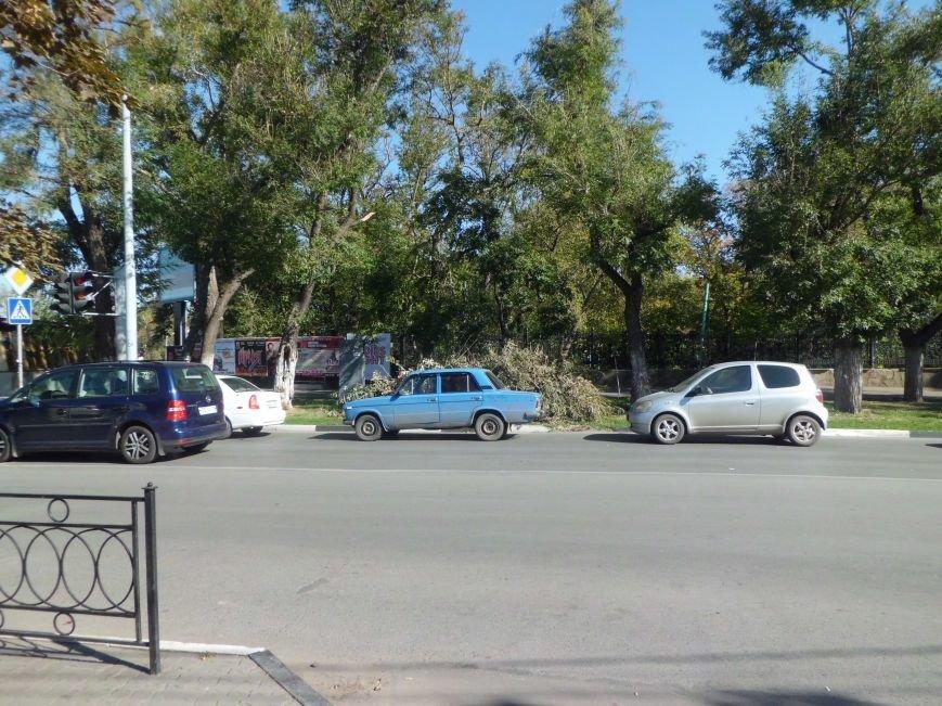 Странный субботник в городе Таганроге(ФОТО), фото-3