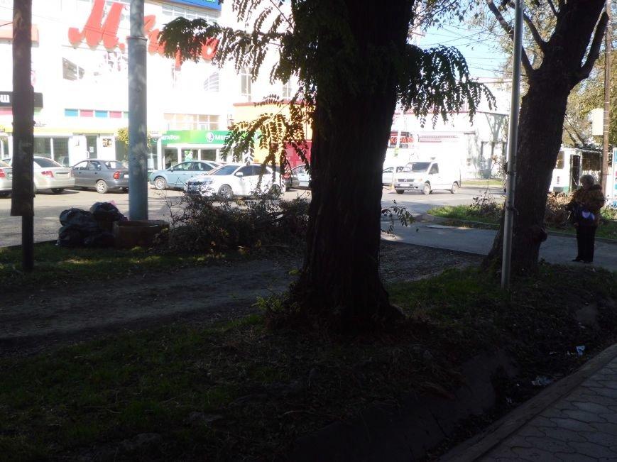 Странный субботник в городе Таганроге(ФОТО), фото-2