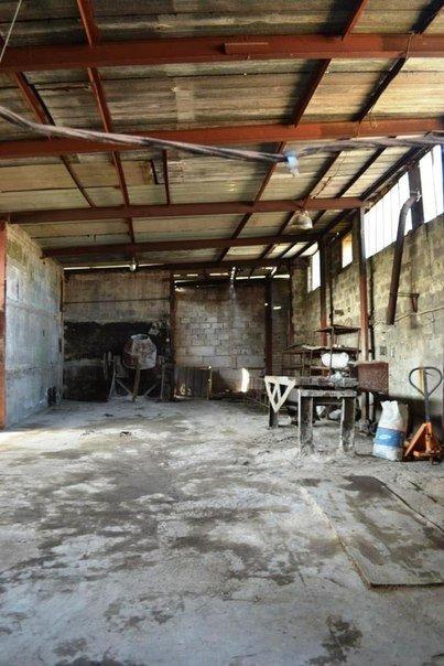 В Мариуполе волонтеры ищут меценатов для строительства приюта для животных, фото-7