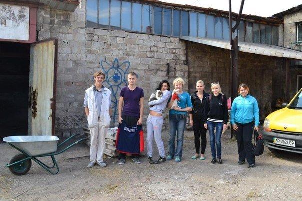 В Мариуполе волонтеры ищут меценатов для строительства приюта для животных, фото-5