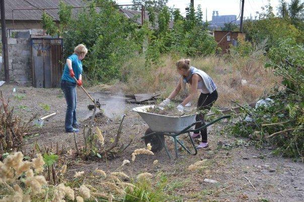 В Мариуполе волонтеры ищут меценатов для строительства приюта для животных, фото-4