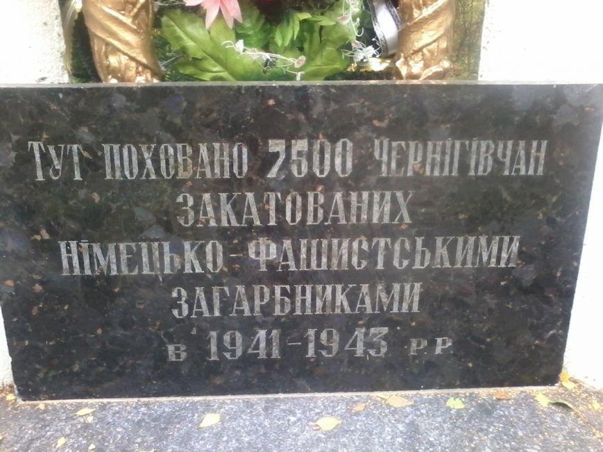 В Чернигове горела братская могила времен второй мировой войны, фото-7