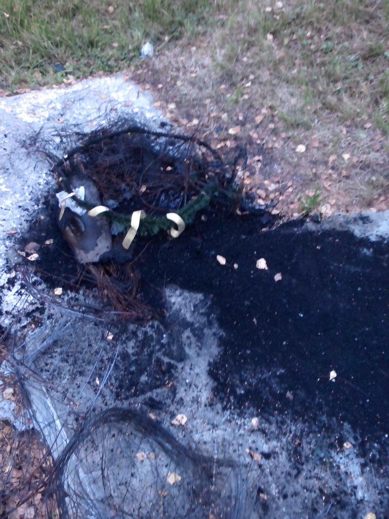 В Чернигове горела братская могила времен второй мировой войны, фото-4