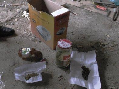 В Белореченском районе полицейские обнаружили плантацию конопли, фото-2