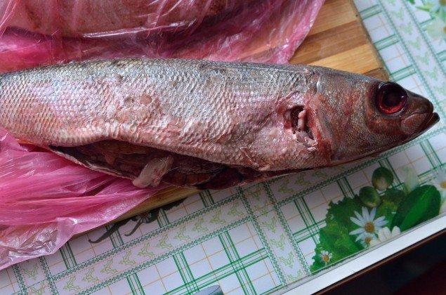 Тернополянам продають заражену глистами рибу (фото), фото-2