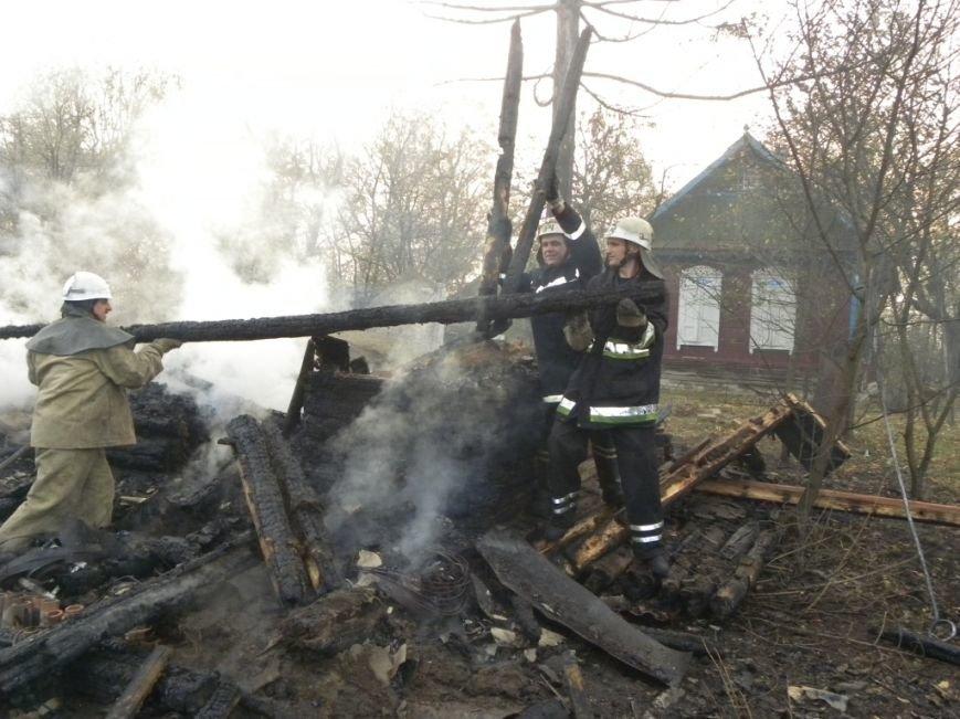 В Черниговской области едва не сгорел целый поселок, фото-3