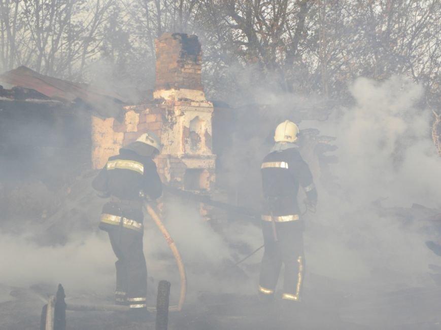 В Черниговской области едва не сгорел целый поселок, фото-2