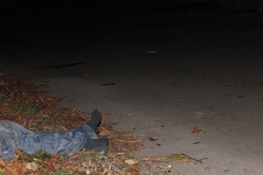 Страшное ДТП в Кривом Роге: погибли два пешехода (ФОТО), фото-8