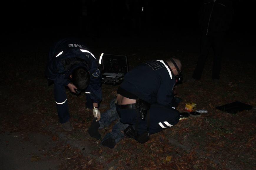 Страшное ДТП в Кривом Роге: погибли два пешехода (ФОТО), фото-6