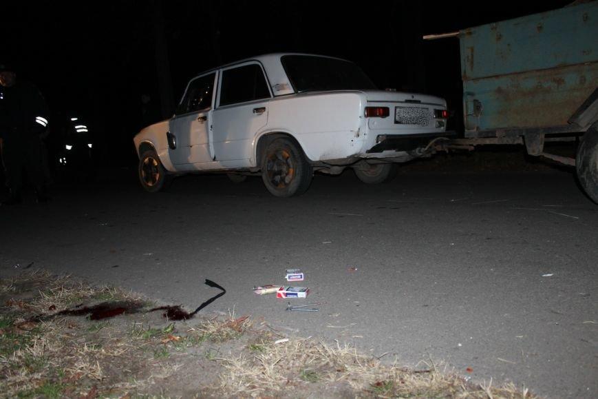 Страшное ДТП в Кривом Роге: погибли два пешехода (ФОТО), фото-5