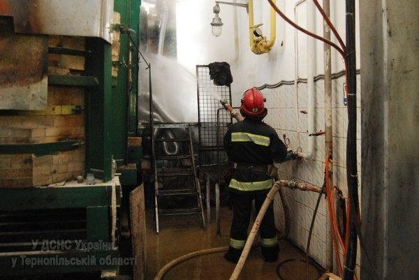На Тернопільщині виникла масштабна пожежа на підприємстві, яке виготовляє скло (фото, відео), фото-3