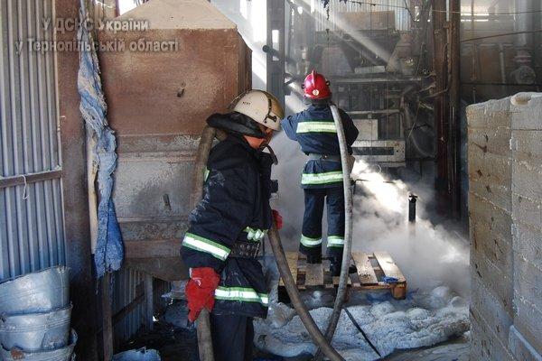 На Тернопільщині виникла масштабна пожежа на підприємстві, яке виготовляє скло (фото, відео), фото-2