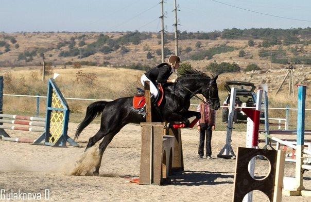 Юные всадницы Ялтинской Федерации конного спорта успешно дебютировали на Первенстве КСК «Спартак», фото-1