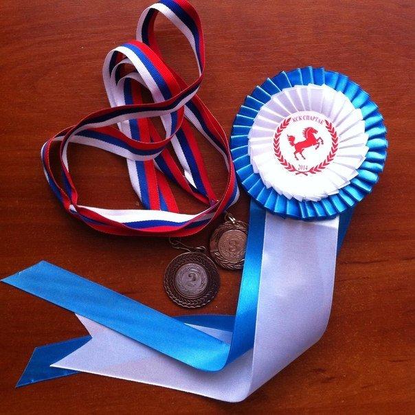 Юные всадницы Ялтинской Федерации конного спорта успешно дебютировали на Первенстве КСК «Спартак», фото-5