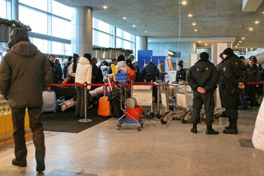 Транспортная полиция раскрыла три кражи у пассажиров Домодедово, фото-1