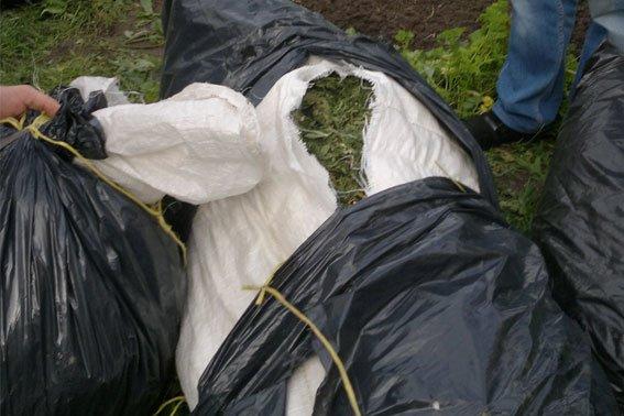 Зброя та наркотики: на Львівщині «винахідник» вирощував марихуану поруч із помідорами (ФОТОРЕПОРТАЖ), фото-7
