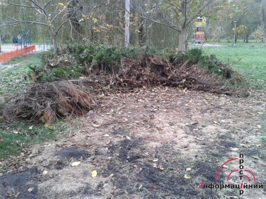 Тернопільський парк «Топільче» знищують (фото), фото-2